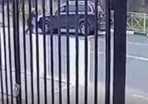Новые подробности убийства пешехода: погиб перед днем рождения жены