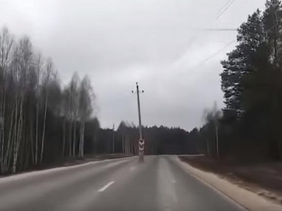 Во Владимирской области опора ЛЭП оказалась посреди трассы