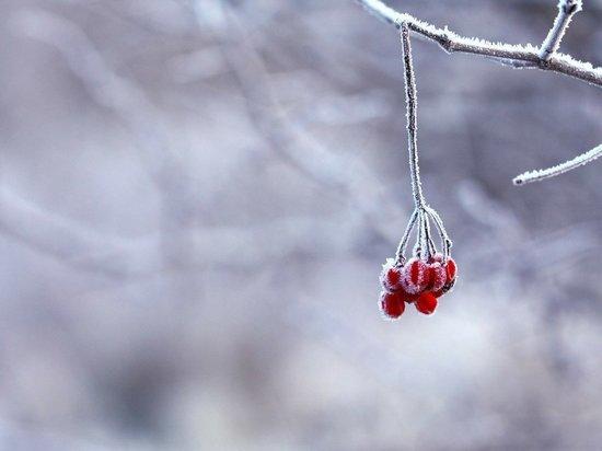 На Саратовскую область идут морозы