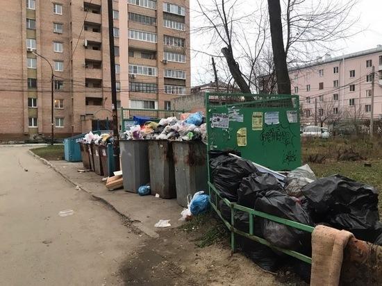 Рязанцам напомнили телефоны для жалоб на вывоз мусора