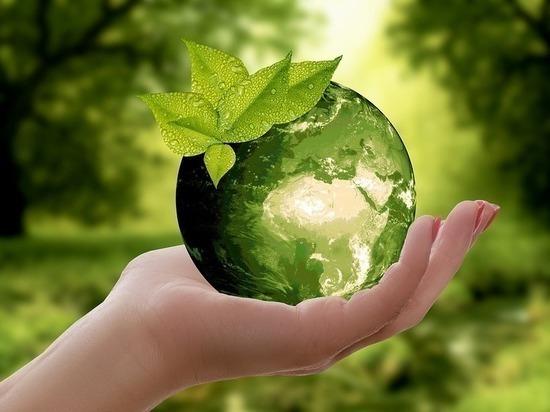 Нечто большее, чем план: экозащитники создают глобальную визуальную концепцию по защите окружающей среды