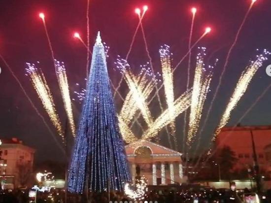В Новороссийске открыли новогоднюю ёлку и включили иллюминацию