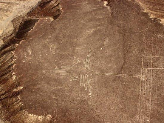 На плато Наска нашли 143 новых геоглифа