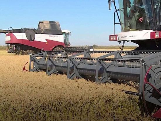 Калмыцким рисоводческим хозяйствам выделят субсидии