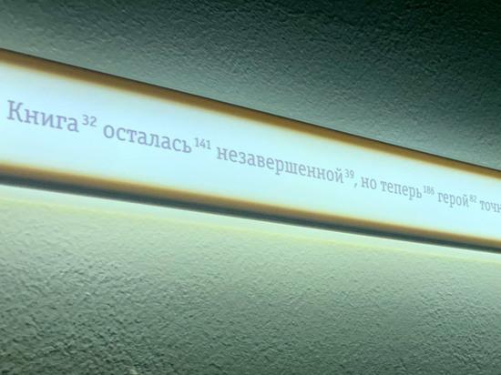 Художник Мустафин создал лабиринт из прямой линии