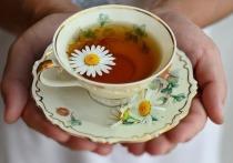 Чем полезны разные виды чая, рассказала волгоградский фитотерапевт