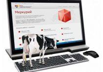 В Дагестане благодаря системе «Меркурий» выявили предприятия-фантомы