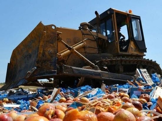 Ни себе, ни людям: в Ивановской области уничтожили 100 кг санкционных продуктов