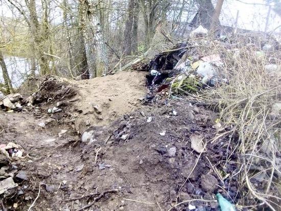 Братская могила-свалка: под Алексином останки павших бойцов ВОВ перемешали с мусором
