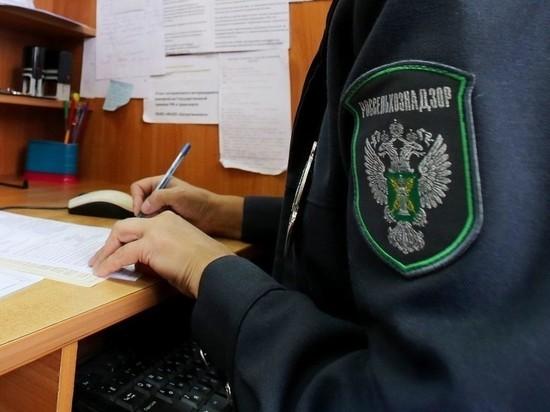 Ивановский Россельхознадзор выявил нарушения в работе одного из торговых домов