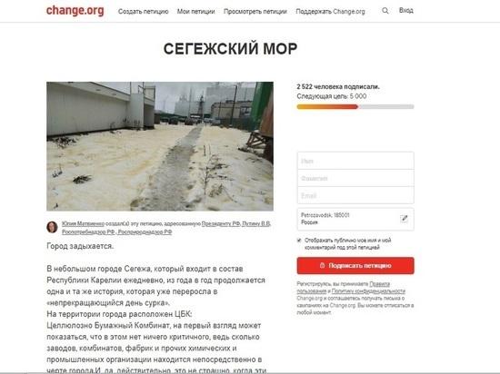 Жители задыхающейся Сегежи создали петицию в адрес Путина