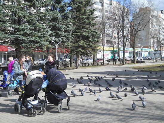 В Перми вдвое увеличивается финансирование программы «Молодая семья»