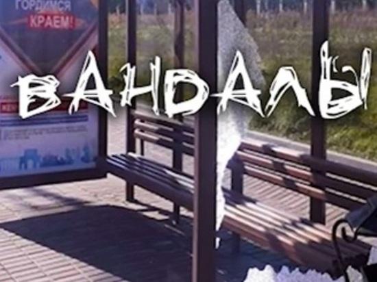 Глава Ставрополья призвал сообщать о случаях вандализма
