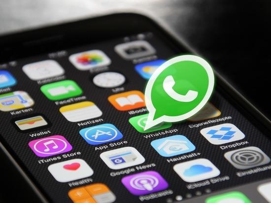 WhatsApp признали любимым мессенджером жителей ЯНАО. Фото