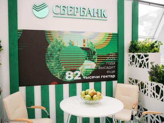 Сбербанк вложился в рекордный урожай яблок в ЮФО и СКФО