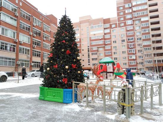 Строительство новогодних городков началось в Хабаровске