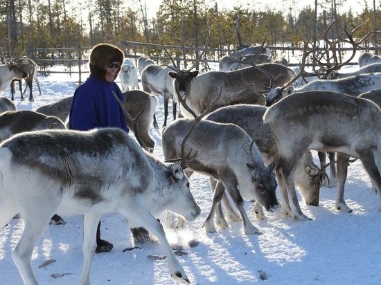 Хотим пить морозный воздух, или Зачем жителям Югры нацпроект «Экология»