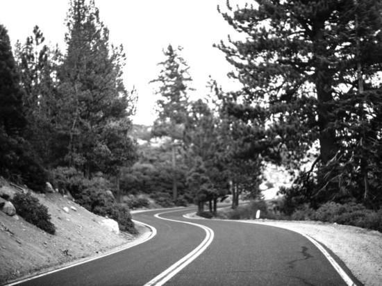 Реализация контрактов жизненного цикла позволит повысить качество автодорог