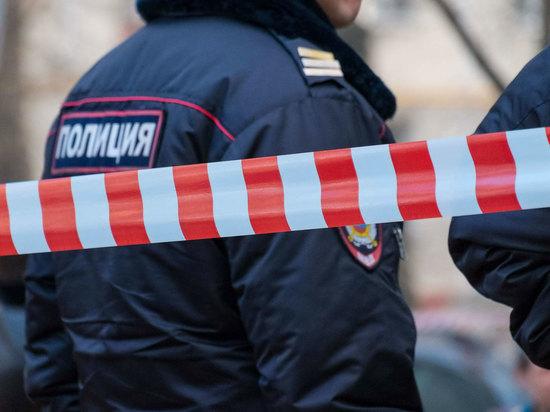 Власти Москвы охарактеризовали семью погибшей второклассницы