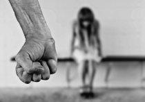 Бывший муж Поклонской разгромил борцов с домашним насилием