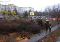 В Симферополе вырубили сквер