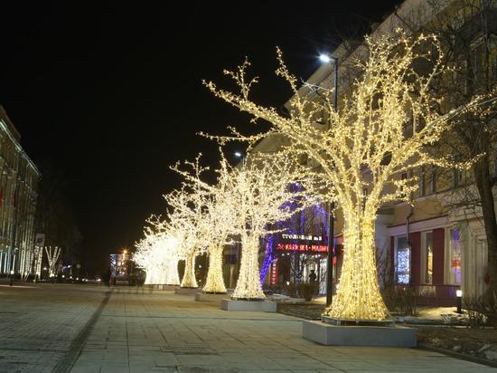 На Дзержинского к празднику устанавливают светящиеся деревья