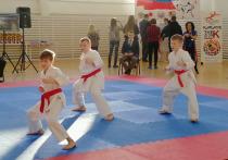 350 каратистов приехали в Псков на чемпионат и первенство WKF