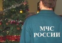 МЧС на Ямале проведет рейды по точкам продаж пиротехники