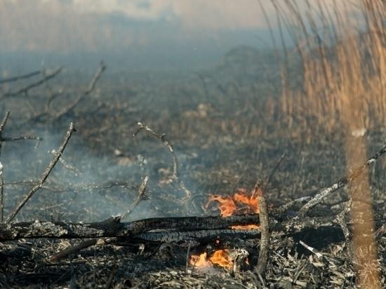 Под Волгоградом в фуре сгорел дальнобойщик