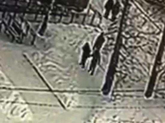 Появилось видео жестокого нападения на педиатра в Лесосибирске