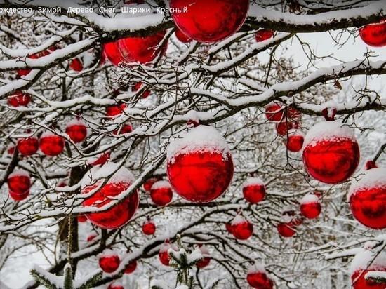 На 5 знаков зодиака в декабре свалятся невероятные предложения