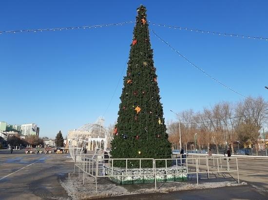 В центре Энгельса установили новогоднюю ёлку