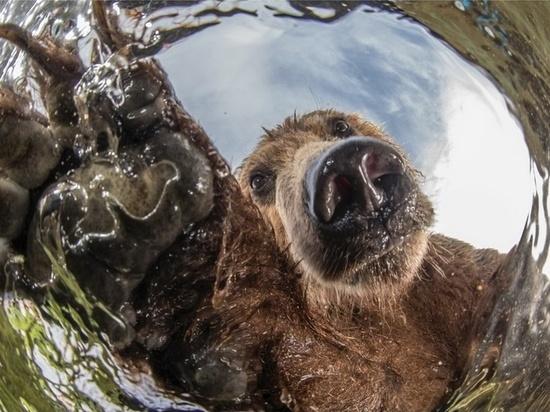 Фотовыставка «Самая красивая страна» откроется в Пскове