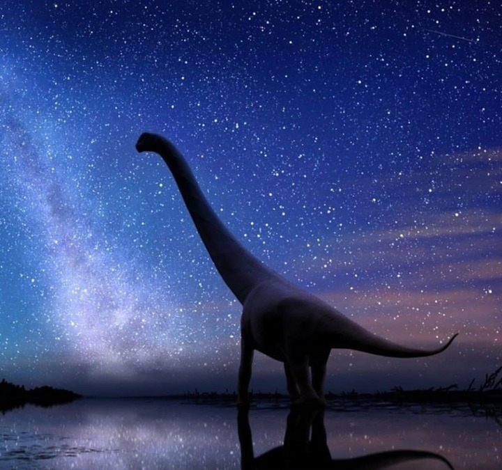 В Якутии нашли зубы самых северных динозавров-завропод