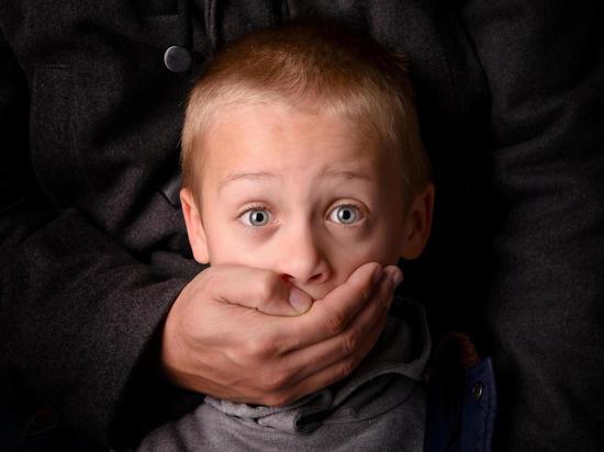 В Ярославском районе неизвестный пытался похитить 9-летнего мальчика