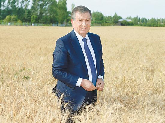 Как новый президент Мирзиёев управляет Узбекистаном