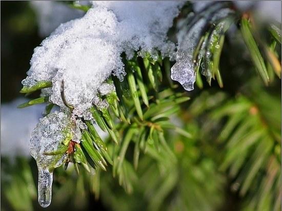 Почему синоптики назвали наступивший декабрь «разочаровывающим»