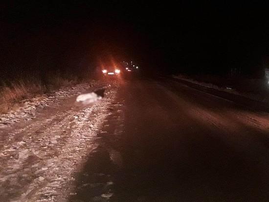 В окрестностях Ижевска автомобиль насмерть сбил пешехода