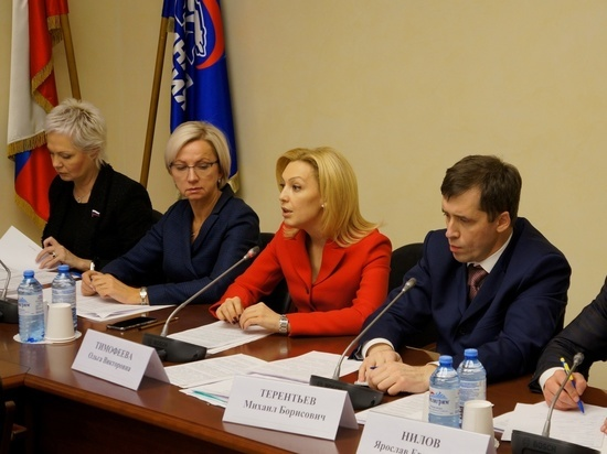 Зампред Госдумы: инвалиды по-прежнему сидят запертыми дома