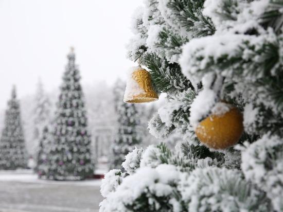Новогодние праздники с дополненной реальностью пообещали ставропольцам
