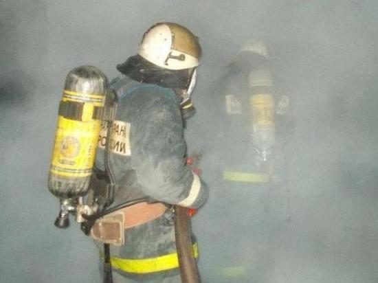 40 телят вывели спасатели из горящего здания в Чувашии