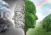 «Зеленые» выступили против утверждения опасных проектов без обсуждений