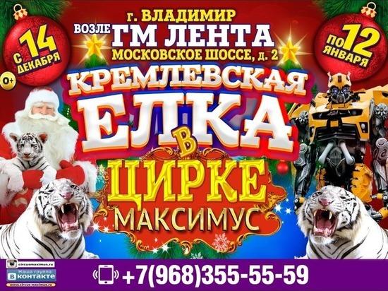 Цирк «Максимус» приглашает владимирцев на новогоднее шоу
