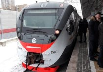 Приравнять дебош в поездах к теракту предложили общественники