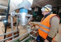 Есть завод, но нет опилок: глава Бурятии посетил новый завод по производству пеллетов