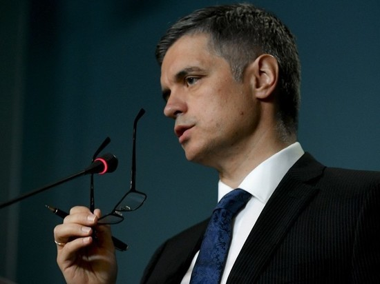 Украина раскрыла проект решения