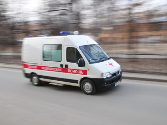 Светлана Агапитова рассказала о девочке, упавшей голой на машину