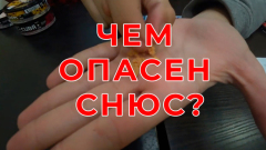Эксперты приравняли порцию сосательного табака к 2 пачкам сигарет
