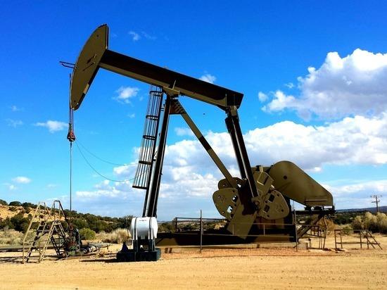 Саммит ОПЕК определит цену нефти: эксперты дали тревожный прогноз