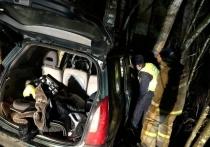 24 раза за неделю псковские спасатели выезжали на ДТП